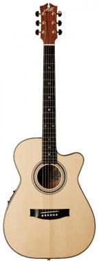 Maton ebg808c michael fix
